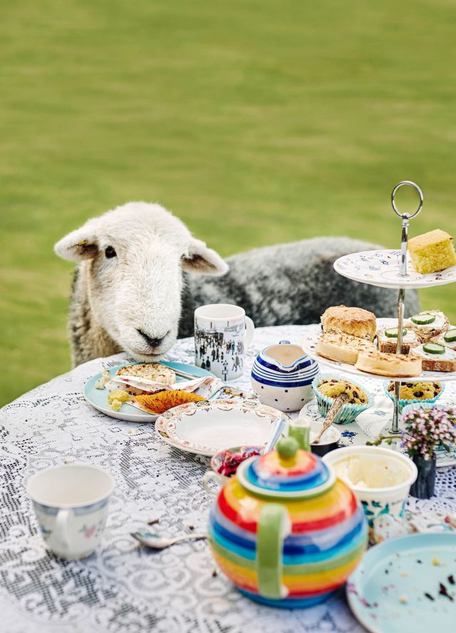 Naughty Sheep, airbnb uk