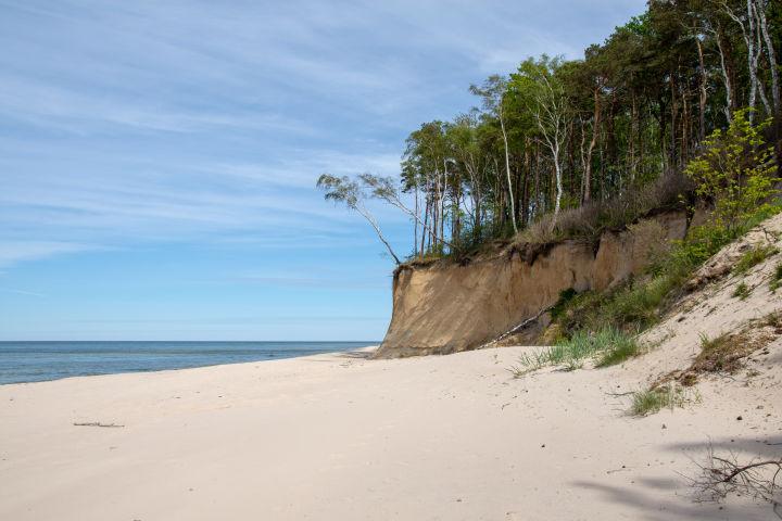 Beach, Cloud, Coast